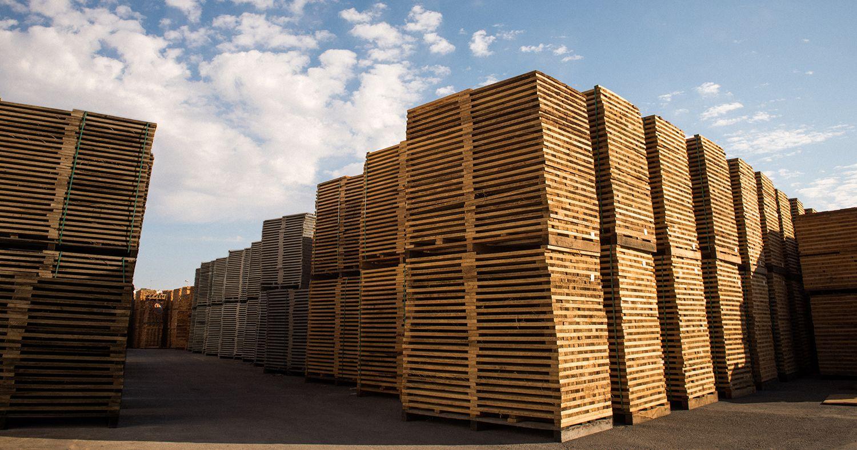 Tonel madera de roble